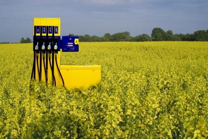 PE: NIE dla przyspieszonej ścieżki legislacyjnej w sprawie ograniczeń na rynku biopaliw