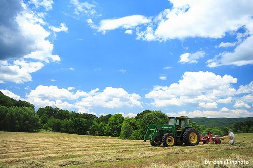 Przyspieszenie wypłaty dopłat rolnych za 2013