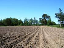 Zmiany w zakupie ziemi