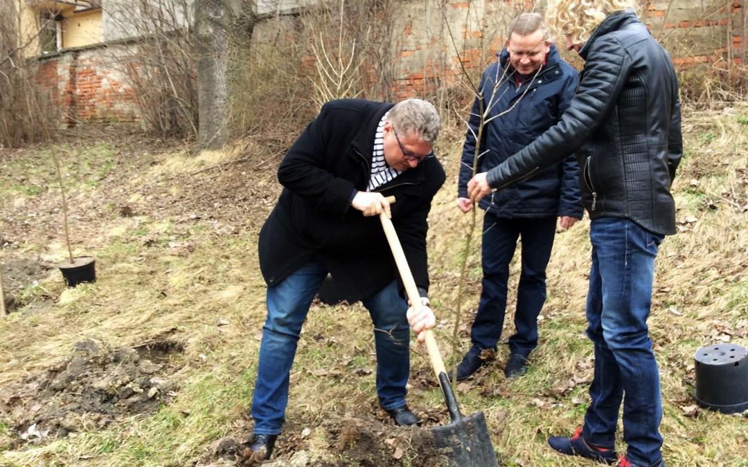 Drzewo dla Polski. Minister Środowiska nominowany do posadzenia drzewa
