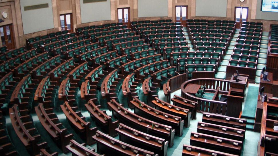 podział ról w Sejmie RP